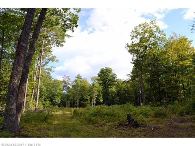 0 Taylors Trl, New Gloucester, ME 04260 (MLS #1326647) :: DuBois Realty Group
