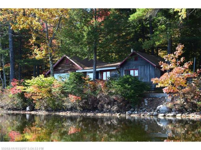 781 Peabody Pond Rd, Sebago, ME 04029 (MLS #1330418) :: The Freeman Group