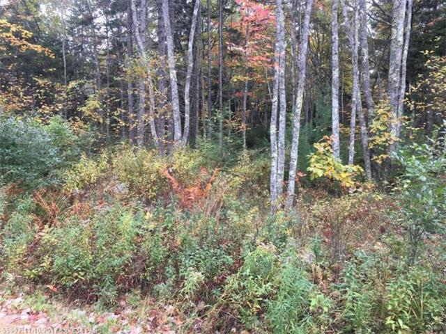0 Russell Ln, Bristol, ME 04541 (MLS #1330602) :: DuBois Realty Group
