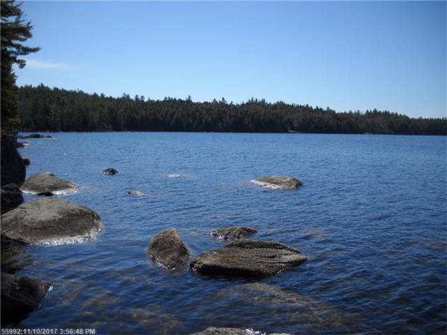 0 Black Island Way, Ellsworth, ME 04605 (MLS #1331937) :: Acadia Realty Group