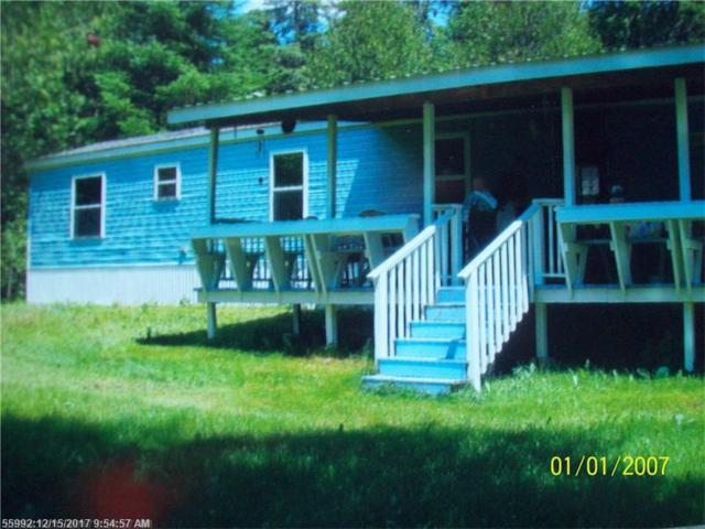 891 Sly Brook Rd, Wallagrass, ME 04781 (MLS #1334719) :: The Freeman Group
