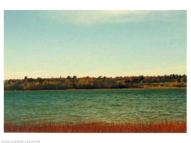 Lot 39-5 Orchard Ln, Lamoine, ME 04605 (MLS #1338668) :: Acadia Realty Group