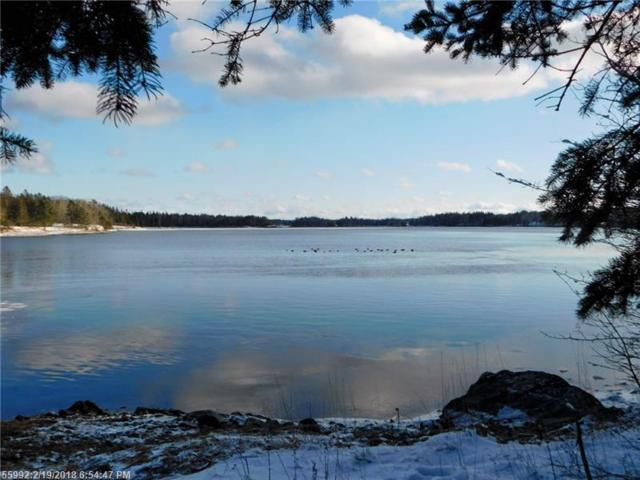 Lot # 2 Hardy Point Road, Pembroke, ME 04666 (MLS #1339037) :: Acadia Realty Group
