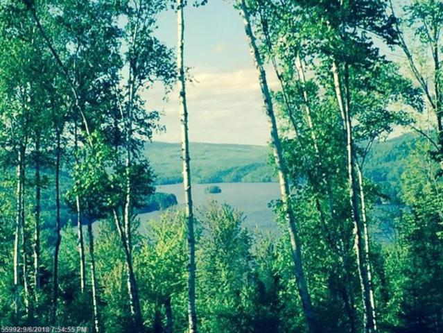 Lot 7-A Cates Hill Rd, Caratunk, ME 04925 (MLS #1344465) :: Herg Group Maine