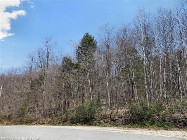 Lot76 Douglas Rd SW, Newry, ME 04261 (MLS #1349334) :: DuBois Realty Group