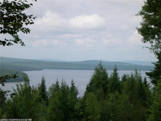 M42/L11 Tilt Of The Kilt Rd, Rangeley, ME 04970 (MLS #1359762) :: DuBois Realty Group