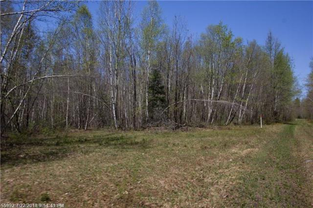Lots 25, 25A S South Main St, Solon, ME 04979 (MLS #1362416) :: DuBois Realty Group