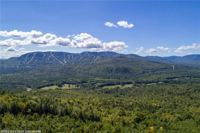0 Vail Dr, Newry, ME 04261 (MLS #1371166) :: DuBois Realty Group