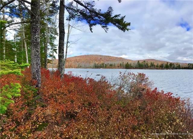 0 Wedge Heights, Orland, ME 04472 (MLS #1375783) :: Your Real Estate Team at Keller Williams