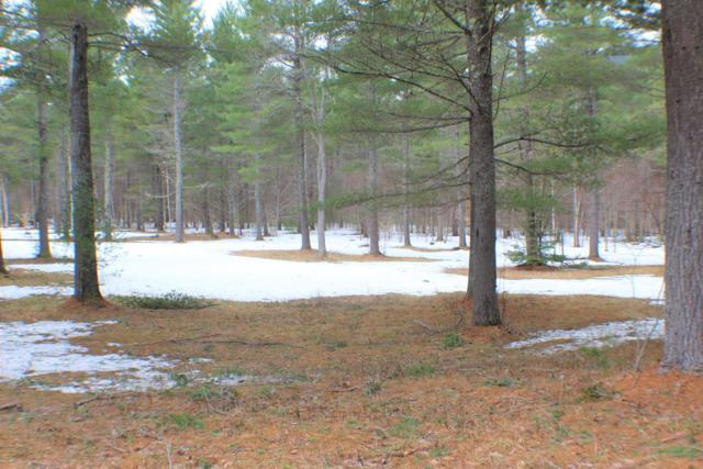Lot 10 H-2 Riverwood Drive, Newry, ME 04261 (MLS #1411224) :: Your Real Estate Team at Keller Williams
