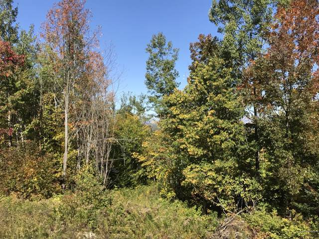 199 Windy Pitch Drive, Parkman, ME 04443 (MLS #1435774) :: Your Real Estate Team at Keller Williams
