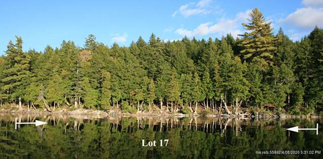 Lot 17 Smith Cove Road, Cathance Twp, ME 04657 (MLS #1443552) :: Keller Williams Realty