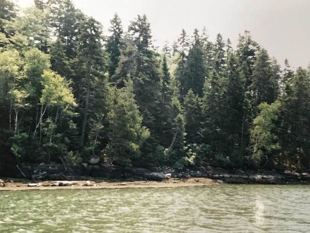 Lot #73 Nepp Point Road, Roque Bluffs, ME 04654 (MLS #1445348) :: Your Real Estate Team at Keller Williams