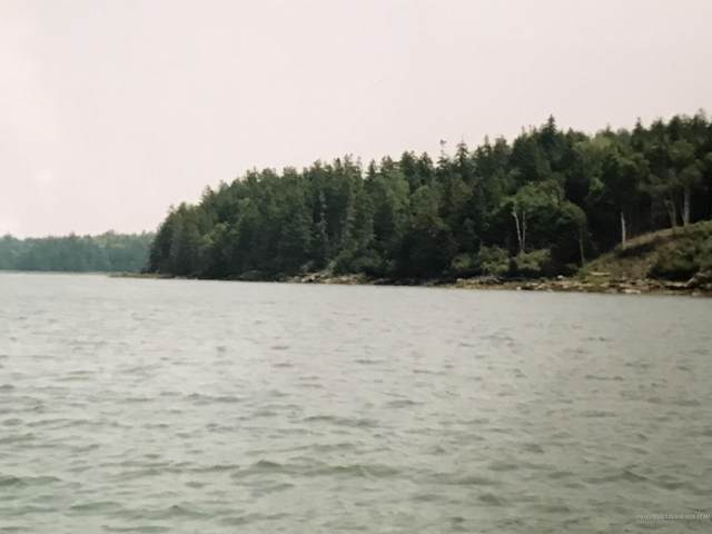 Lot #74 Nepp Point Road, Roque Bluffs, ME 04654 (MLS #1445350) :: Your Real Estate Team at Keller Williams