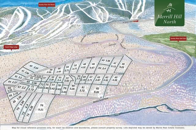 Lot 55 Tourmaline Way, Newry, ME 04261 (MLS #1480025) :: Keller Williams Realty