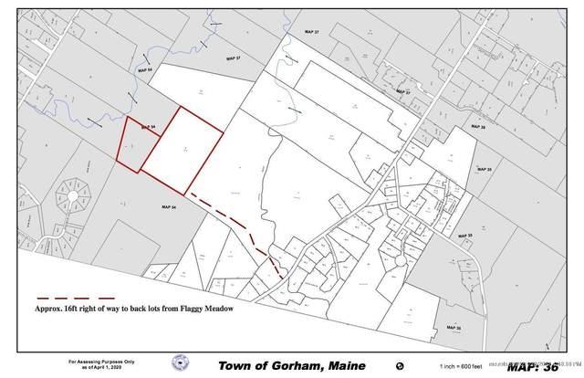 00 Flaggy Meadow Road, Gorham, ME 04038 (MLS #1488081) :: Keller Williams Realty