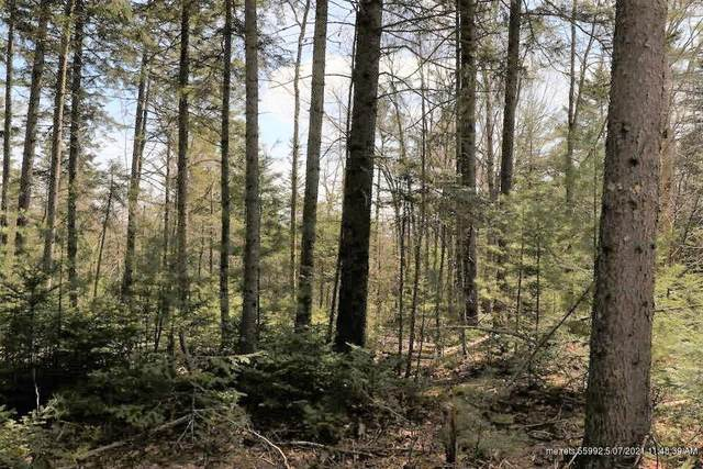 Lot 7 Wendall Woods Lane, Blue Hill, ME 04614 (MLS #1488891) :: Keller Williams Realty