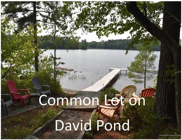 Lot 53 Shore Road, Fayette, ME 04349 (MLS #1499289) :: Linscott Real Estate