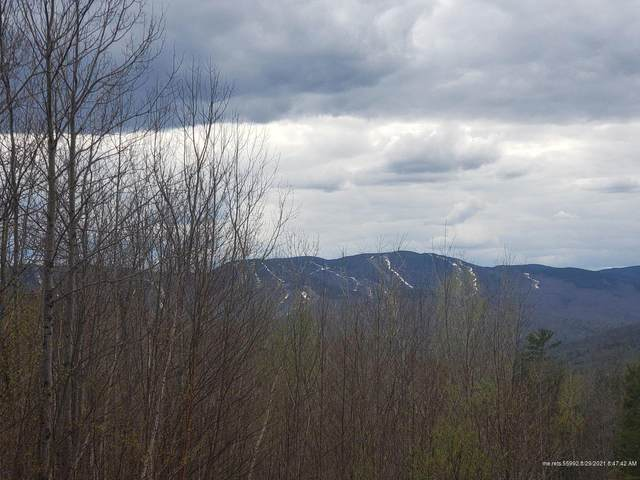 Lot #21 Glades View Ave, Newry, ME 04261 (MLS #1506234) :: Linscott Real Estate