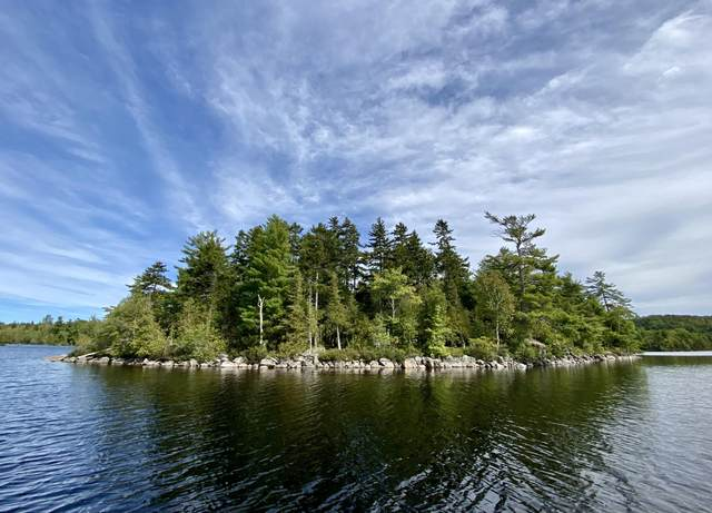 0 Small Island Island, Alexander, ME 04694 (MLS #1510532) :: Keller Williams Realty