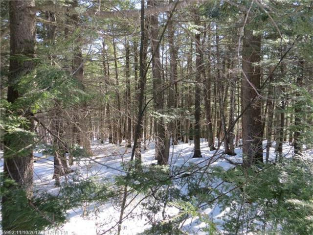Lot 65 Snowbird Ln, Newry, ME 04261 (MLS #1300430) :: DuBois Realty Group