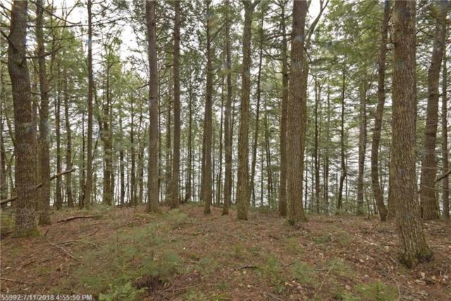 6-6a Lombard Lk, Lakeville, ME 04487 (MLS #1304476) :: DuBois Realty Group