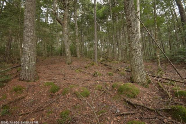 6-06b Lombard Lake Rd, Lakeville, ME 04487 (MLS #1305001) :: DuBois Realty Group