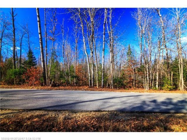 0 Town Farm Rd, Hartford, ME 04220 (MLS #1333474) :: DuBois Realty Group