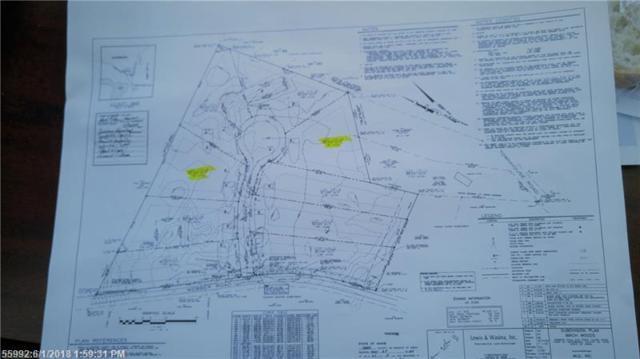 21 Wild Berry Ln, Waterboro, ME 04061 (MLS #1339747) :: DuBois Realty Group