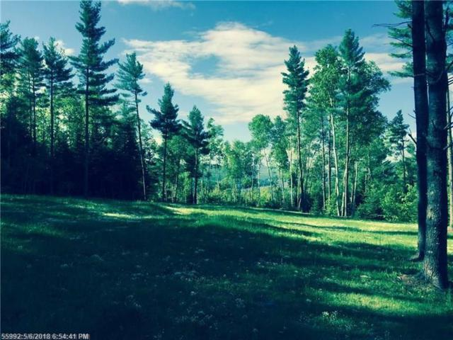 Lot 7-A Cates Hill Rd, Caratunk, ME 04925 (MLS #1344467) :: Herg Group Maine