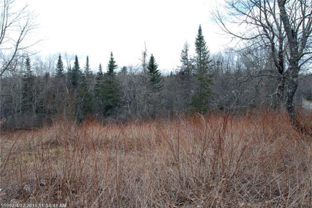 00 Cedar Swamp Rd, Orland, ME 04472 (MLS #1345460) :: Acadia Realty Group