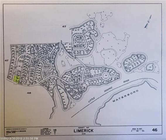 Lot 195-196 Pond Rd, Limerick, ME 04048 (MLS #1348907) :: DuBois Realty Group