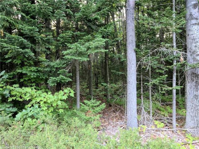 M5L5A Cedar Pond Rd, Durham, ME 04222 (MLS #1367924) :: DuBois Realty Group