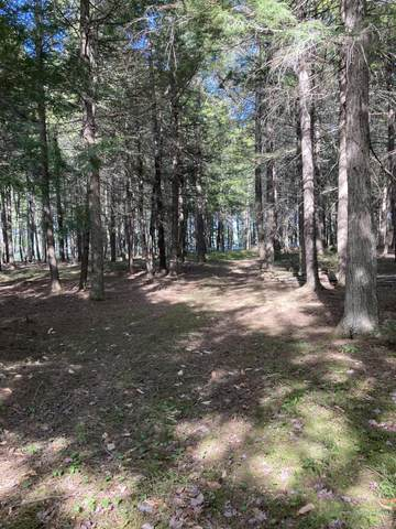 TBD Lot 4 Love Lake Road, Crawford, ME 04694 (MLS #1494996) :: Linscott Real Estate