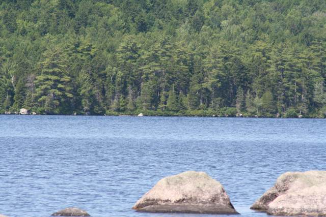 280 Sys Road, Lakeville, ME 04487 (MLS #1497121) :: Keller Williams Realty