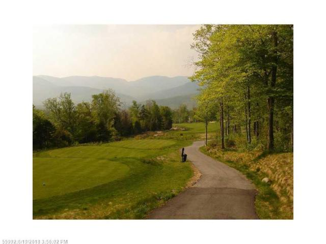 Lot 1 Mahoosuc Glen, Newry, ME 04261 (MLS #1116160) :: DuBois Realty Group