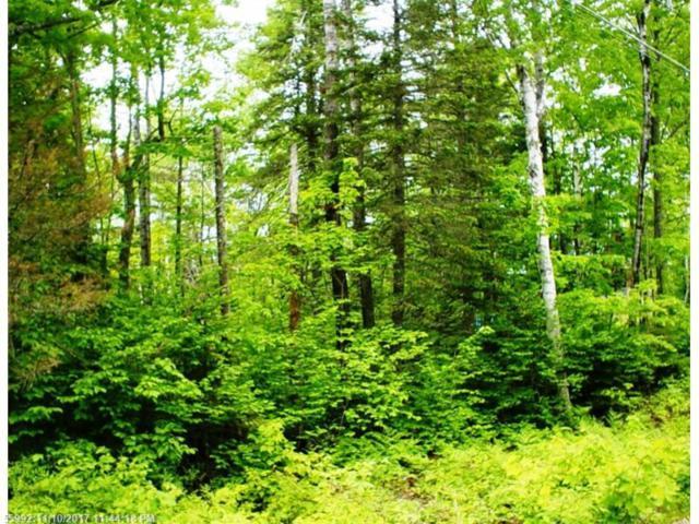 2013 Pine Road, Carrabassett Valley, ME 04947 (MLS #1134188) :: DuBois Realty Group