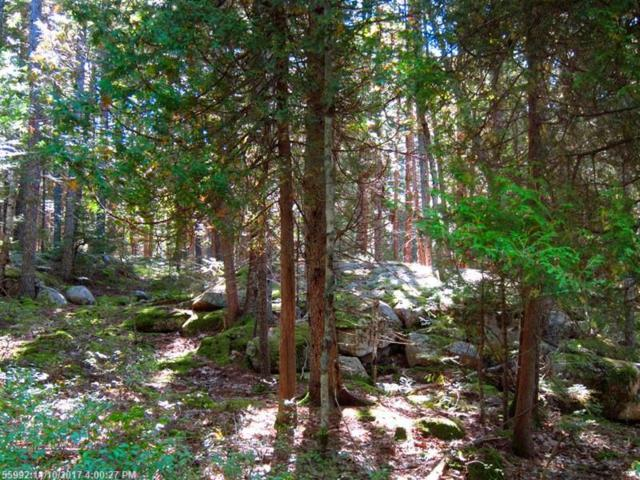 0 Giant Slide Rd, Mount Desert, ME 04662 (MLS #1331580) :: Acadia Realty Group