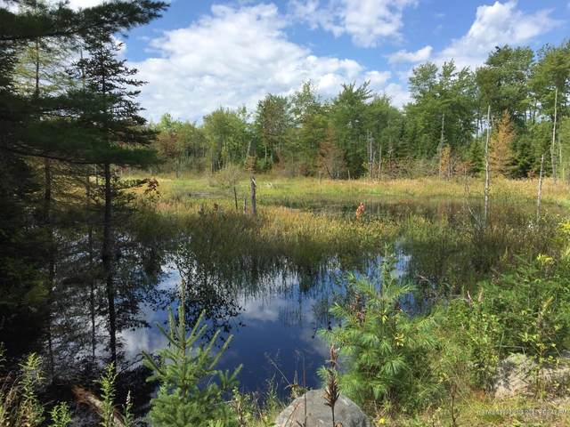 Lot 9 Surry By The Bay Lane, Surry, ME 04684 (MLS #1426439) :: Keller Williams Realty