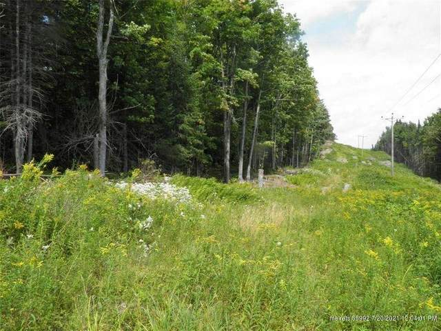 000 Edelheid Road S, Sandy River Plt, ME 04970 (MLS #1497734) :: Linscott Real Estate