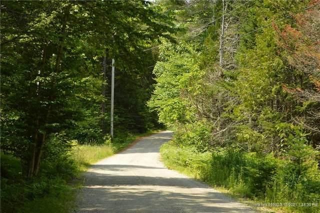 52 Bear Springs Lane, Surry, ME 04684 (MLS #1361352) :: Keller Williams Realty