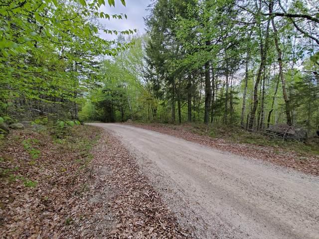 4A Spruce Mountain Lake Road, Beddington, ME 04622 (MLS #1492454) :: Linscott Real Estate