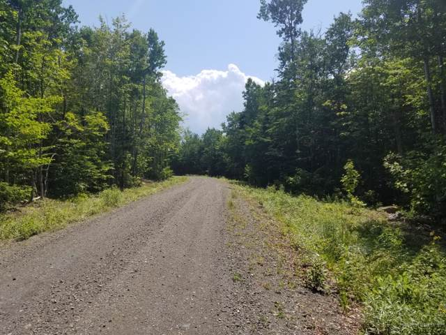Lot 3 Black Bear Lane, Greenville, ME 04441 (MLS #1423024) :: Your Real Estate Team at Keller Williams