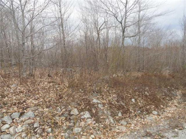 Lot 21 Ridgeview Road, Harrison, ME 04040 (MLS #1091383) :: DuBois Realty Group