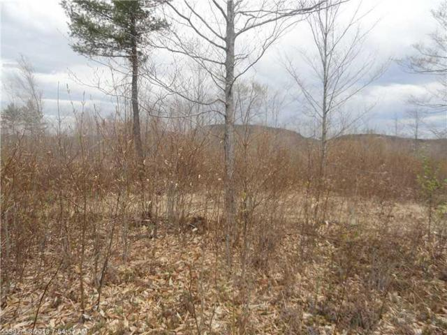 Lot 20 Ridgeview Road, Harrison, ME 04040 (MLS #1091389) :: DuBois Realty Group