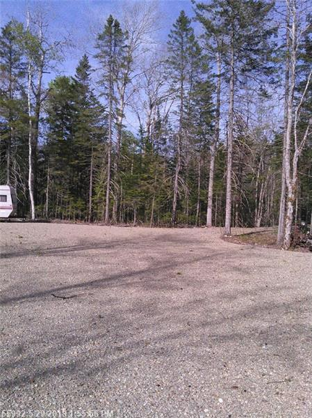 Lot 809 Maple St, Wesley, ME 04686 (MLS #1352875) :: DuBois Realty Group