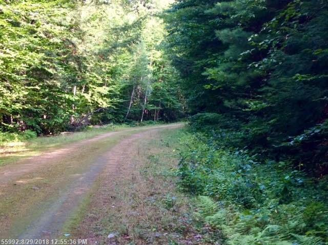 Lot 41 Fernalds Hill Way, Stow, ME 04037 (MLS #1368094) :: DuBois Realty Group