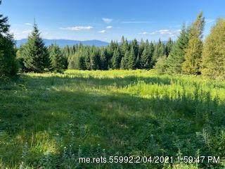 103E Left Branch, Sandy River Plt, ME 04970 (MLS #1464562) :: Keller Williams Realty