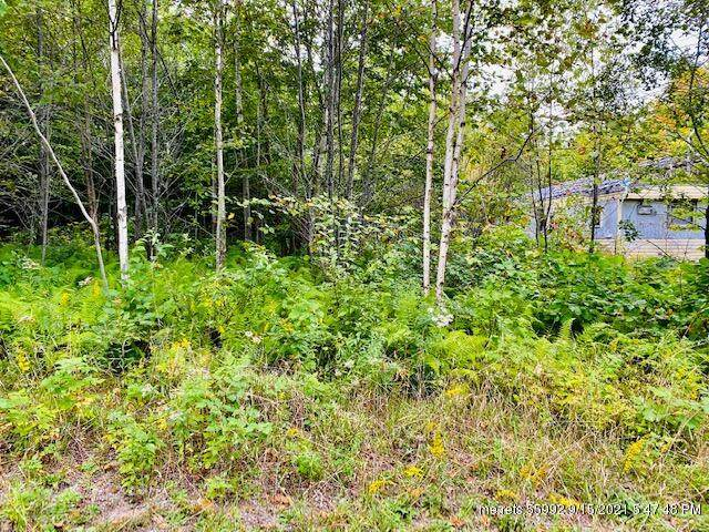 21 Mountain View Drive, Stockton Springs, ME 04981 (MLS #1509026) :: Linscott Real Estate
