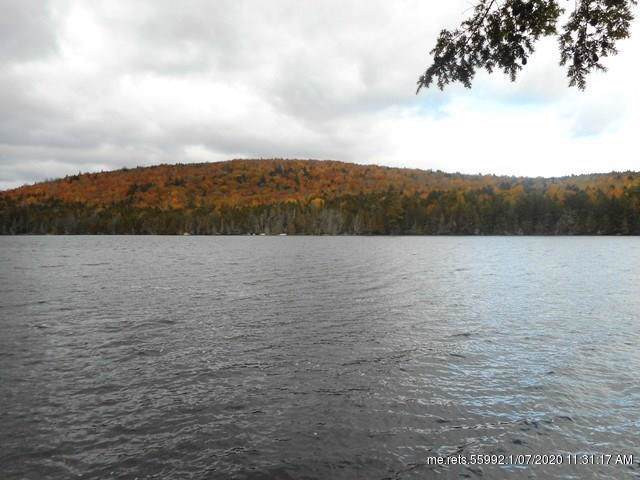 TBD Upper Pug Road, Lakeville, ME 04487 (MLS #1342339) :: Your Real Estate Team at Keller Williams